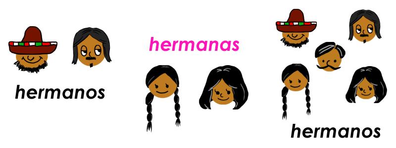 スペイン語のhermanoは兄弟という意味です