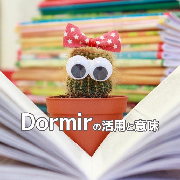 スペイン語動詞dormirの活用と意味