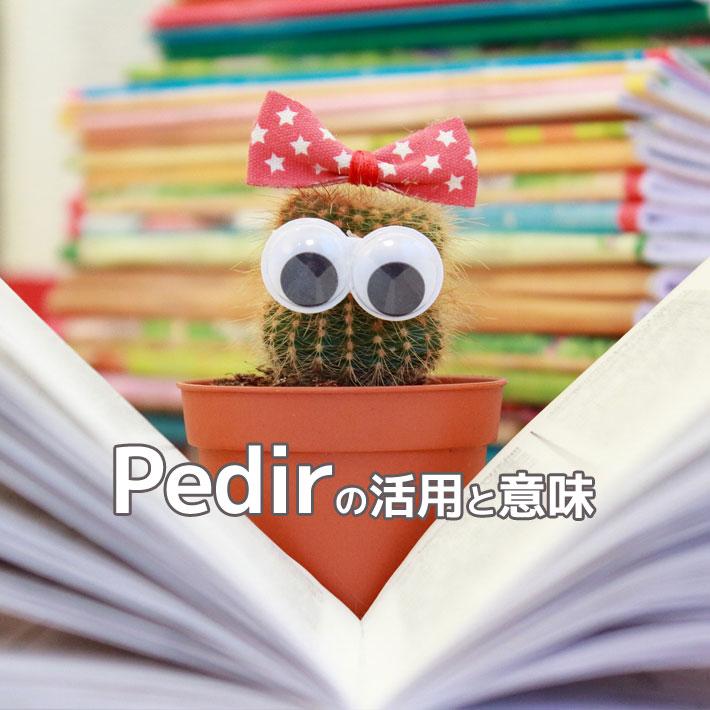 スペイン語動詞pedirの活用と意味