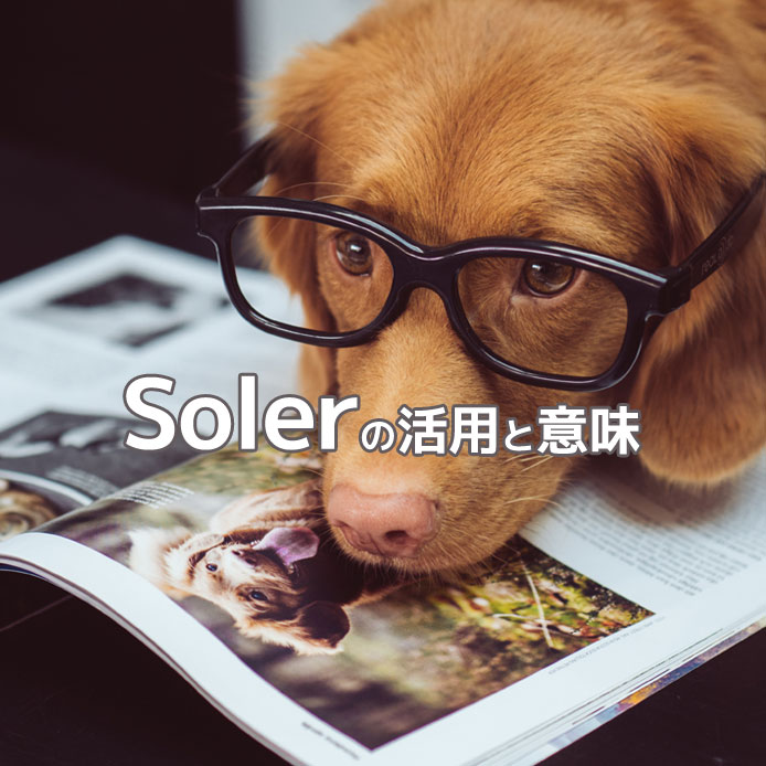 スペイン語動詞solerの活用や意味