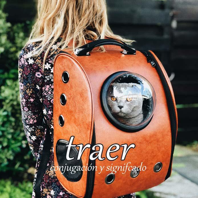 スペイン語の動詞 traer「持ってくる、連れてくる」の活用と意味【例文あり】