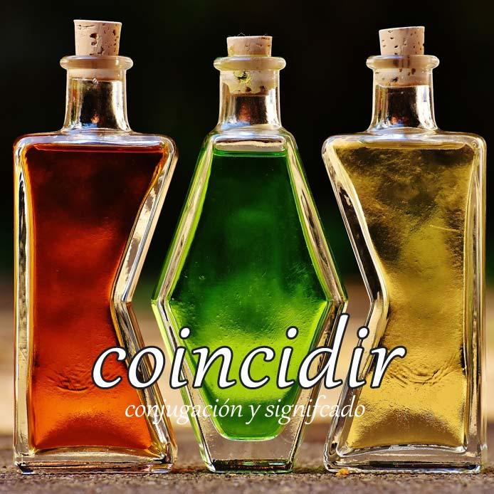 スペイン語の動詞 coincidir「一致する、偶然に会う」の活用と意味【例文あり】