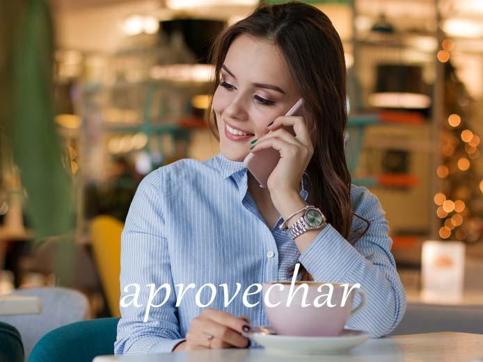スペイン語の動詞 aprovechar「(有効に)利用する」の活用と意味【例文あり】