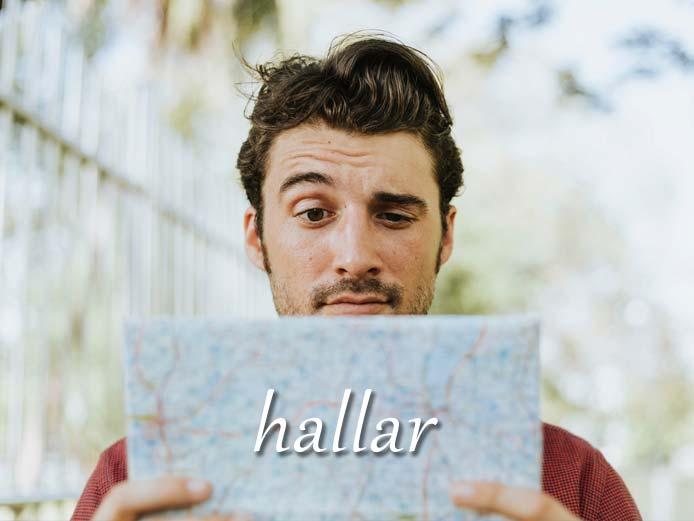 スペイン語の動詞 hallar「見つけ出す、気づく」の活用と意味【例文あり】