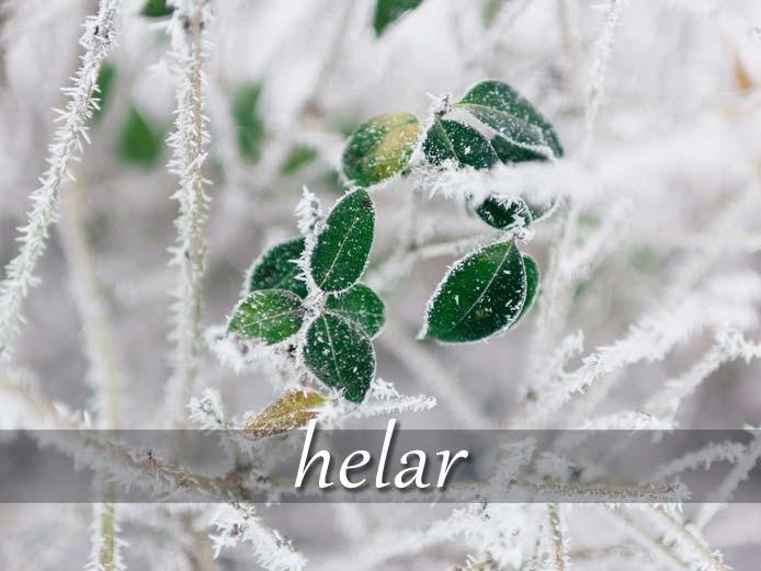 スペイン語の動詞 helar「凍らせる、ぞっとさせる」の活用と意味【例文あり】