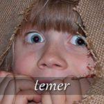 スペイン語の動詞 temer「恐れる、心配する」の活用と意味【例文あり】