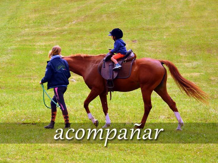 スペイン語の動詞 acompañar「~と一緒に行く(いる)」の活用と意味【例文あり】