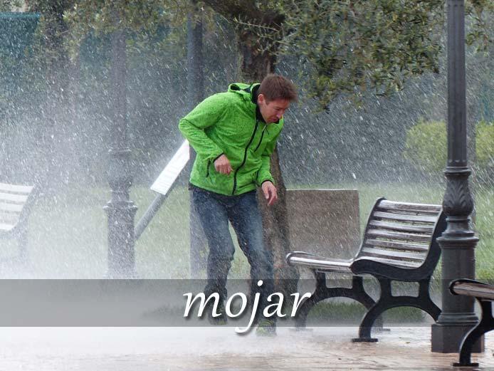 スペイン語の動詞 mojar「ぬらす、浸す」の活用と意味【例文あり】