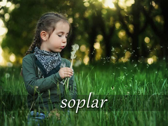 スペイン語の動詞 soplar「息を吐く、吹きかける」の活用と意味【例文あり】