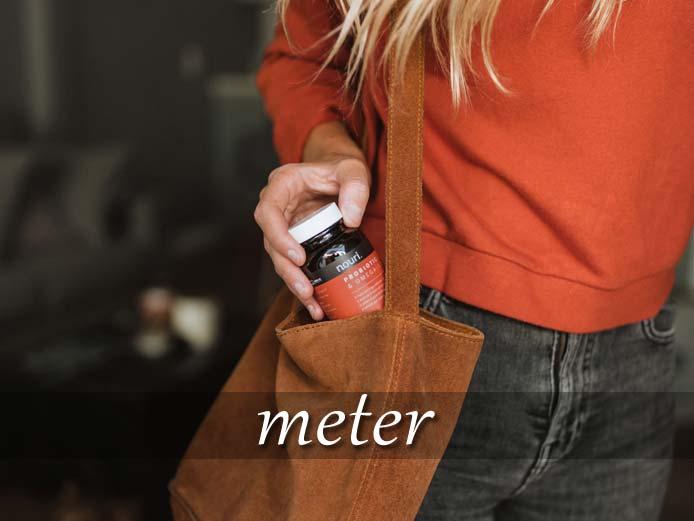 スペイン語の動詞 meter「(中に)入れる」の活用と意味【例文あり】