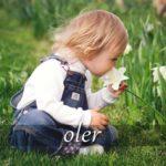 スペイン語の動詞 oler「においを嗅ぐ、におう」の活用と意味【例文あり】