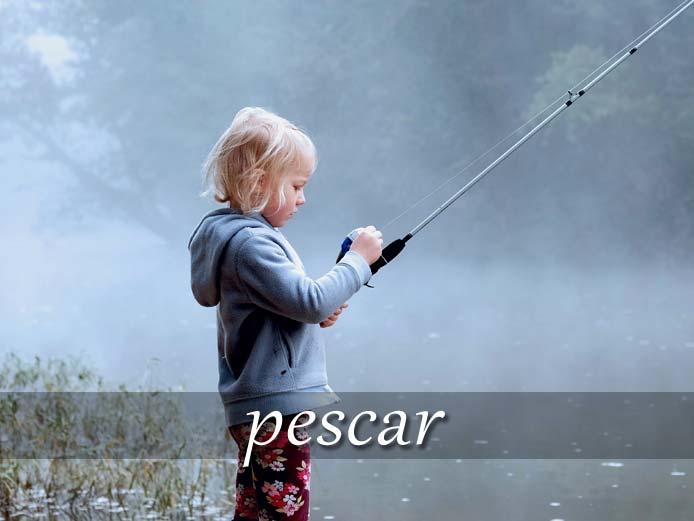 スペイン語の動詞 pescar「釣る、手に入れる」の活用と意味【例文あり】