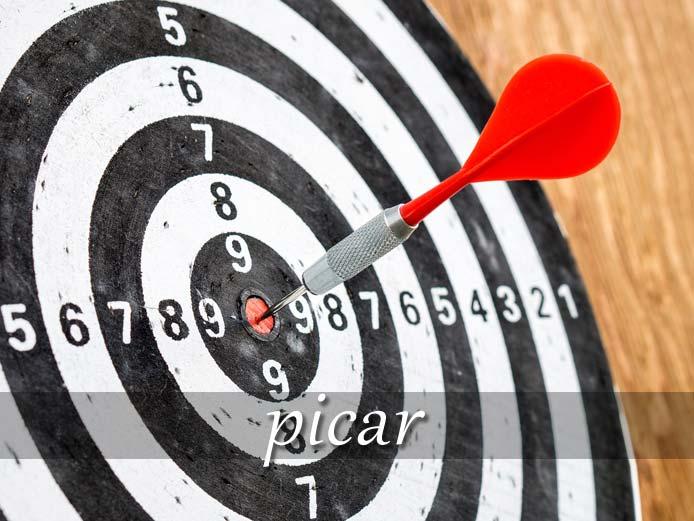 スペイン語の動詞 picar「刺す、チクチクする」の活用と意味【例文あり】