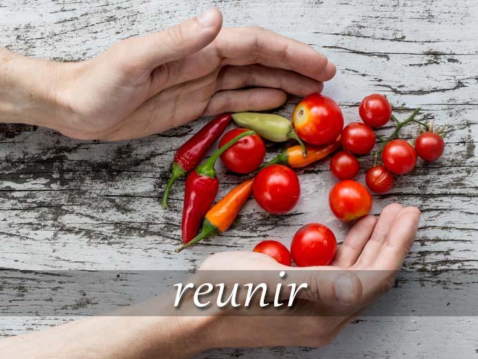 スペイン語の動詞 reunir「集める、兼ね備える」の活用と意味【例文あり】|