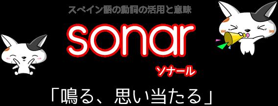 スペイン語の動詞 sonar「鳴る、思い当たる」の活用と意味【例文あり】